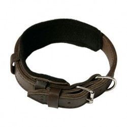 Extra wide collar, perfect for working dogs, sewn