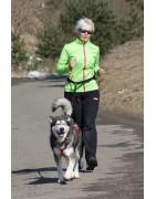 Jogging Leine